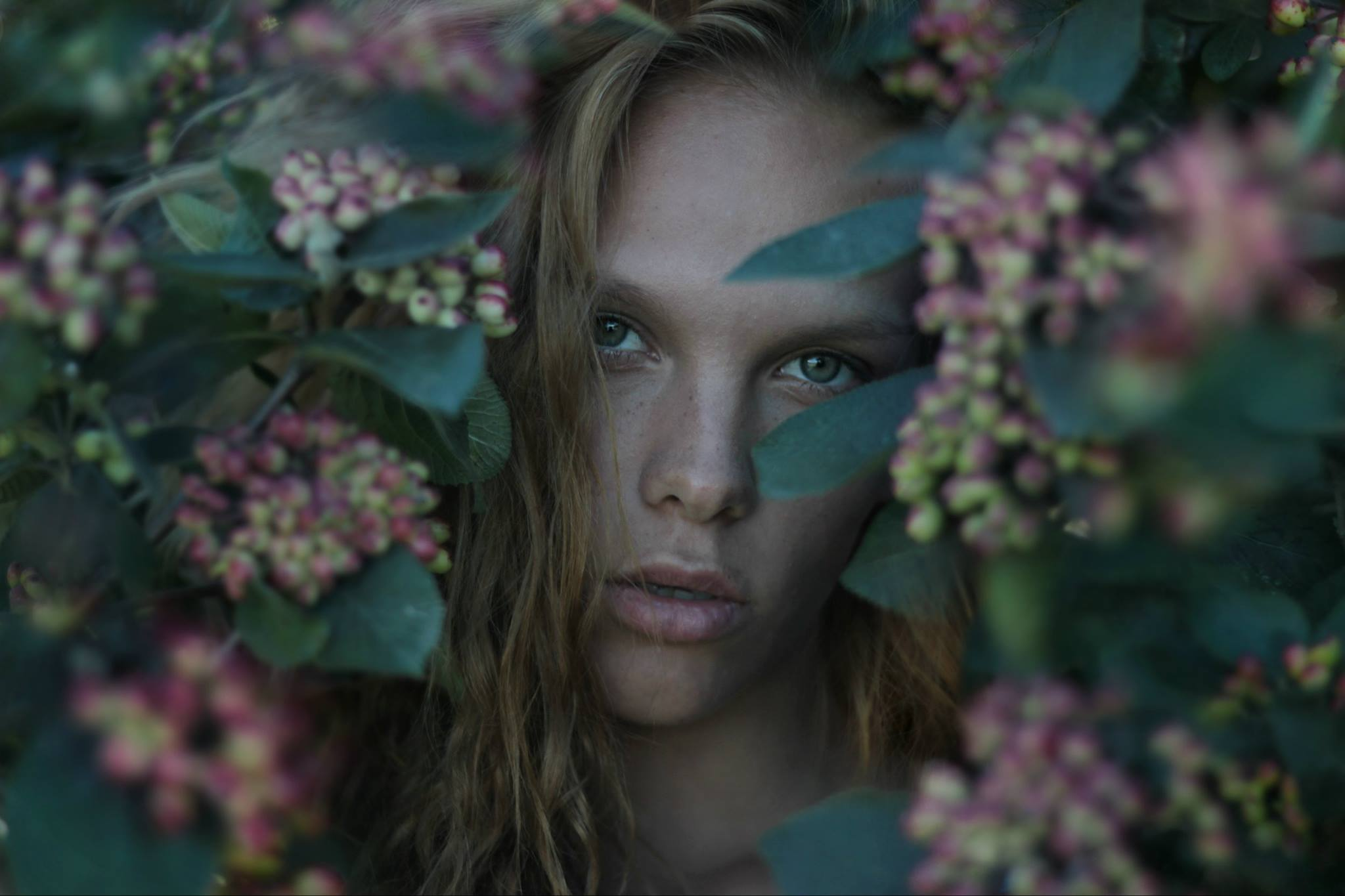 Benedetta Cari Photography